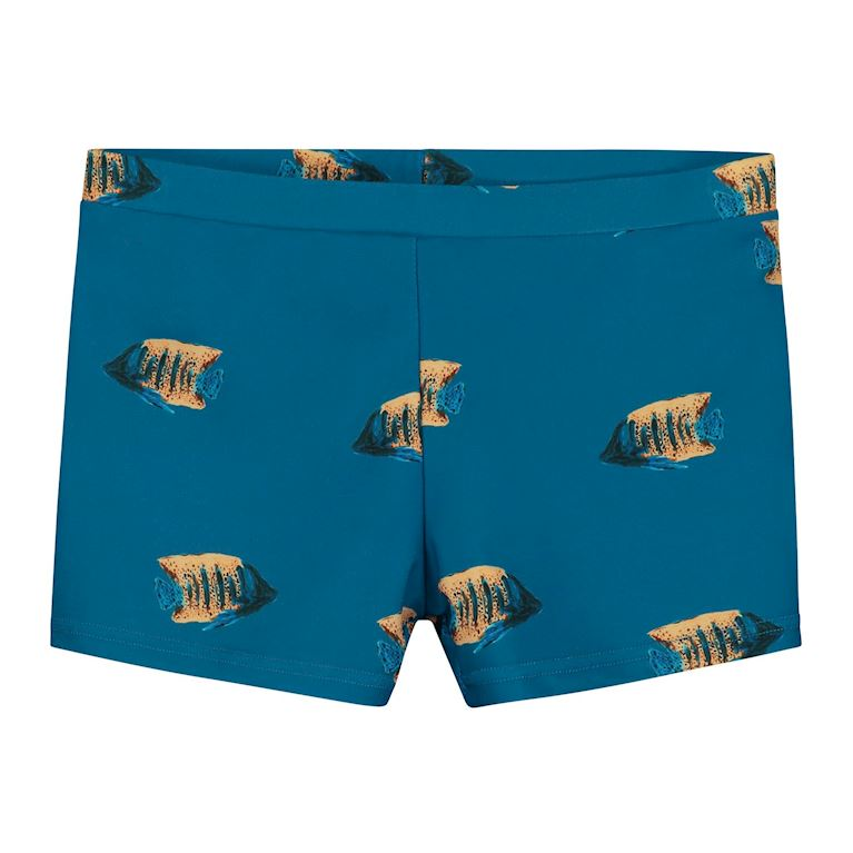 4202137183 | SHIWI swimboxer moonfish